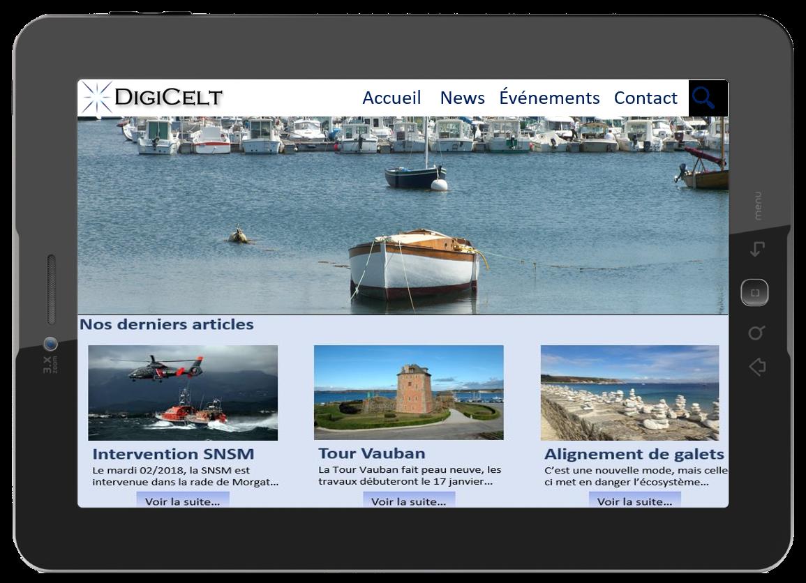 Digicelt - création de site Blog - créateur de sites Internet Essonne - chef de projet multimédia Essonne Paris Ile de France